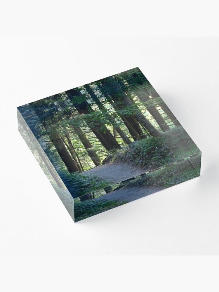 Alternate view of Enfield Glen Path Acrylic Block