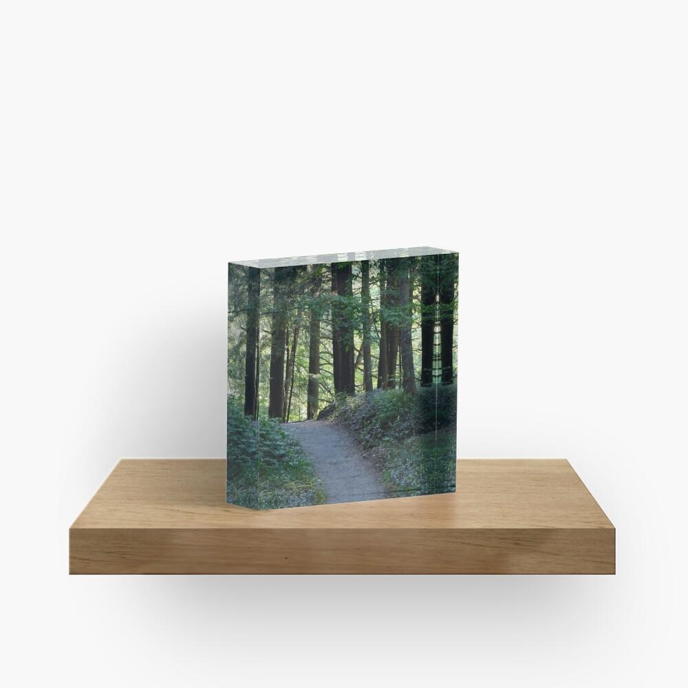 Enfield Glen Path Acrylic Block
