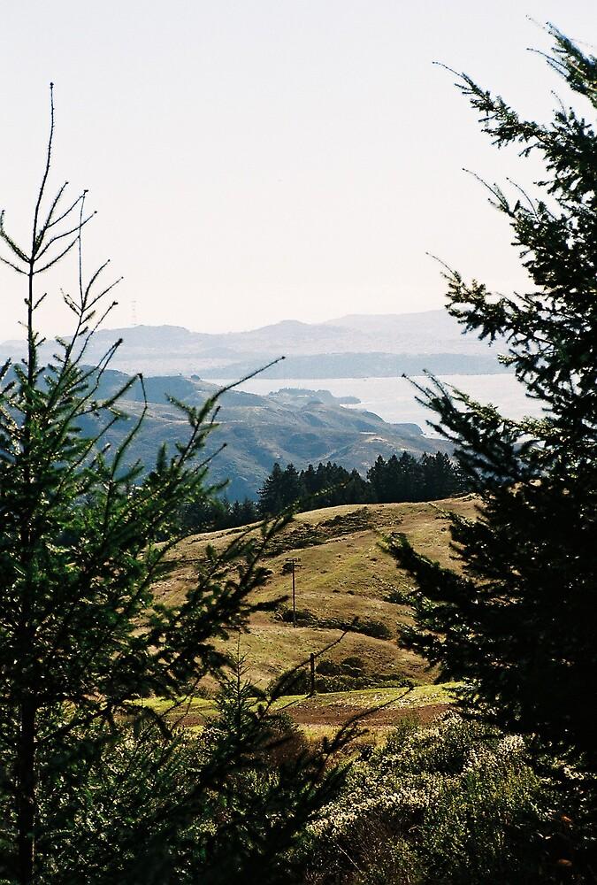 South Marin Coast by stephen hewitt