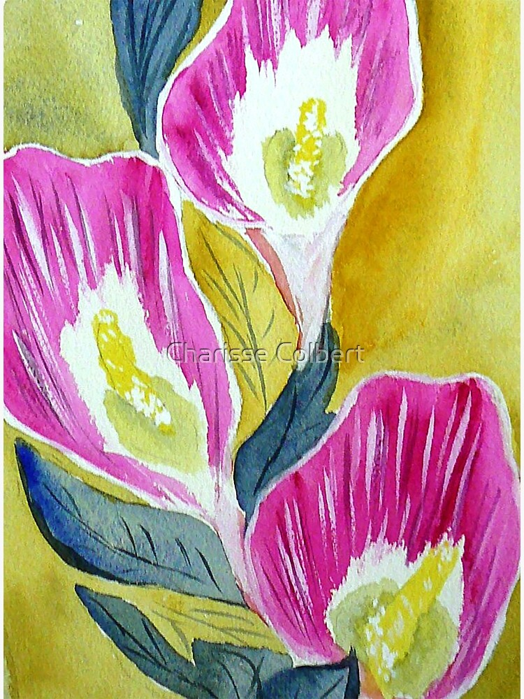 Calla Lilies by charissecolbert