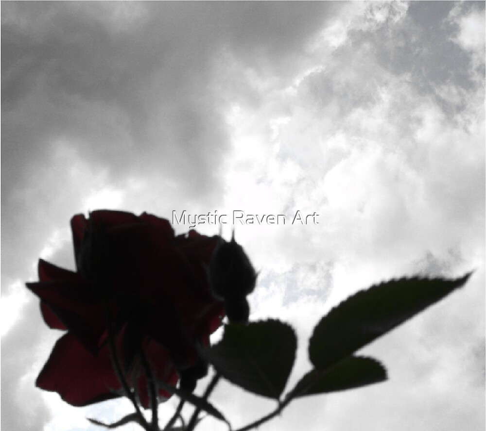 The Rose by Mystic Raven Art
