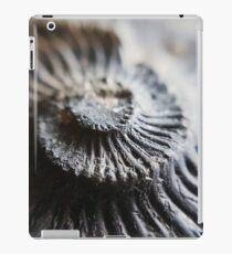 Ammonite Tower // Nature // Fossil // Photography iPad Case/Skin