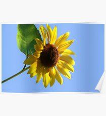Waving To the Sun :-) Hello Sun! Poster