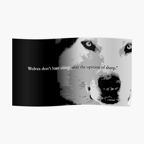 Wolves don't lose sleep over the opinion of sheep Poster
