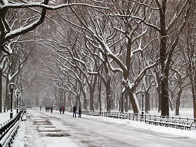 Winter in Central Park by captureamoment