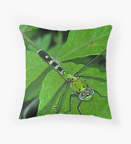Dragon Fly part one Throw Pillow