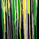 Rainbow Drips on Black by Linda Cleary