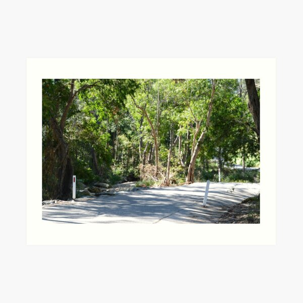 Country road South East Queensland Art Print