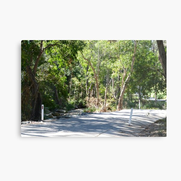 Country road South East Queensland Metal Print