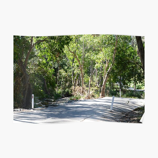 Country road South East Queensland Poster