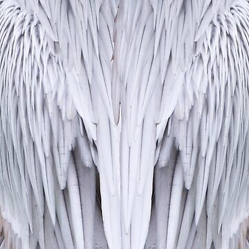 Pelican Feathers Fabric by JohnYoung