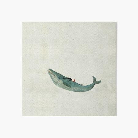 Blue whale rider Art Board Print