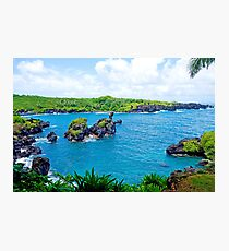 Road to Hana Study 15  Photographic Print