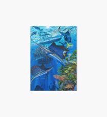 Sailfish Reef Art Board