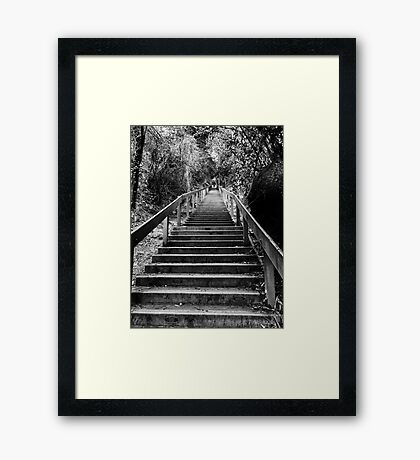 Dipsea Stairs Framed Print
