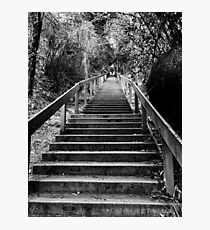 Dipsea Stairs Photographic Print