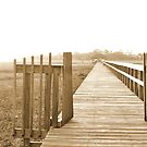 Sepia dock by A.R. Williams