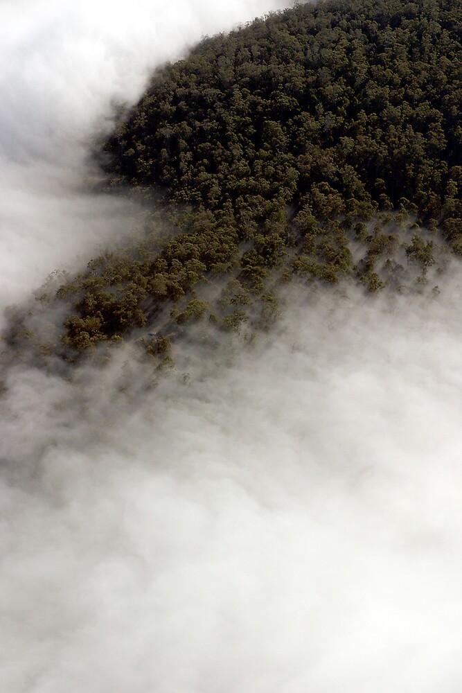Huon Valley Tasmania by Stewart Wells
