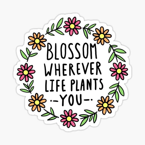 Blossom Wherever Life Plants You Sticker