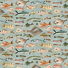 fish by Katherine Quinn
