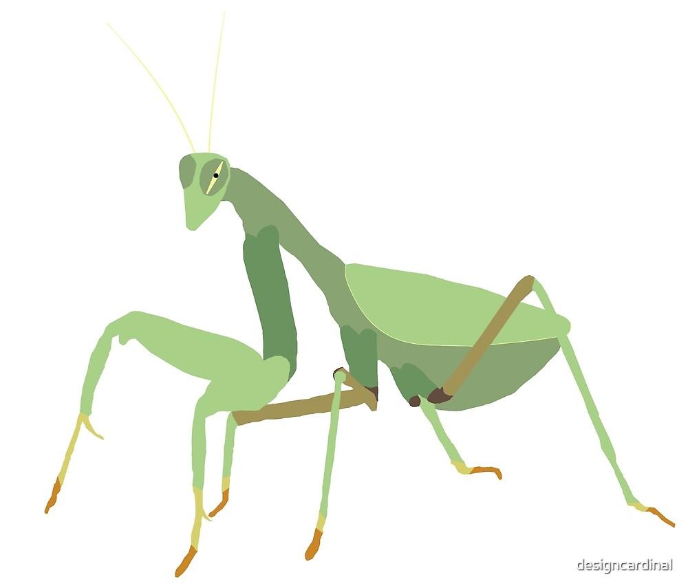 Praying Mantis on White by designcardinal