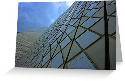 Looking up by Derek Andersen Photography