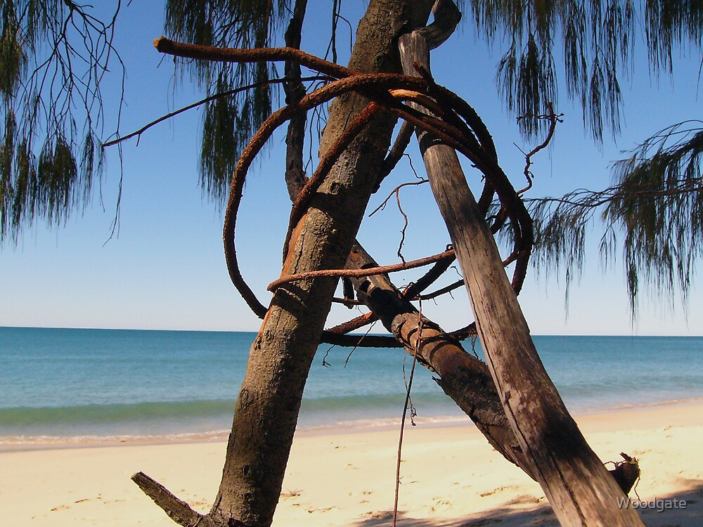 Beach Sculpture by Woodgate