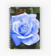 Only When the Moon Is Blue... Spiral Notebook