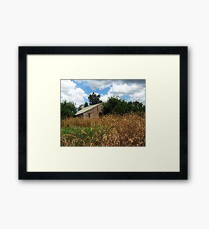 Bulleen farm shed,Bulleen road, Bulleen.Victoria Framed Print
