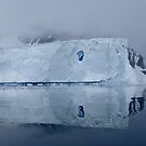 Antarctic Reflections by DaleJacobsen