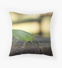 Leaf Insect Throw Pillow