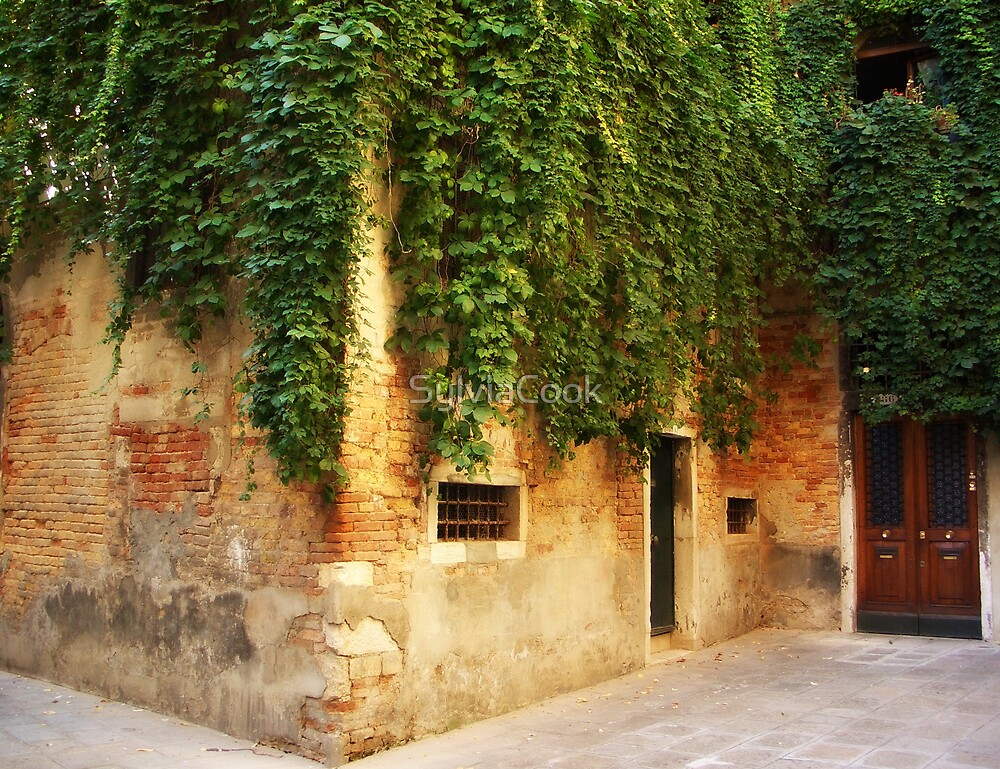 Quiet courtyard by SylviaCook