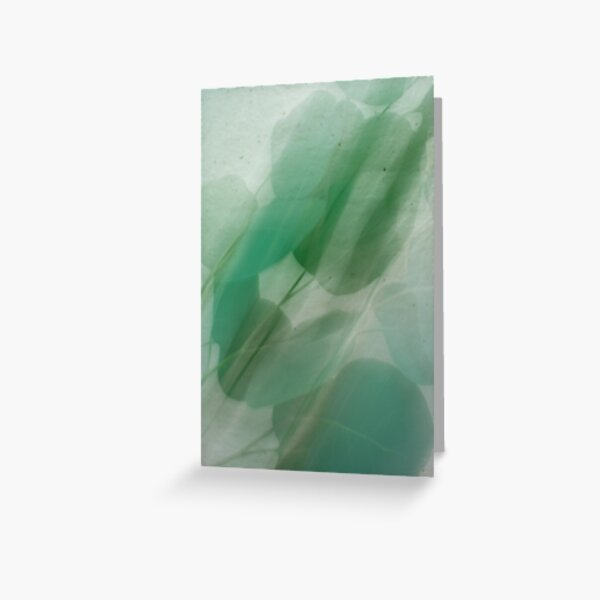 Fleur Blur Series-Abstract Eucalyptus Leaves Greeting Card