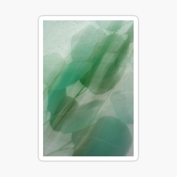 Fleur Blur Series-Abstract Eucalyptus Leaves Sticker