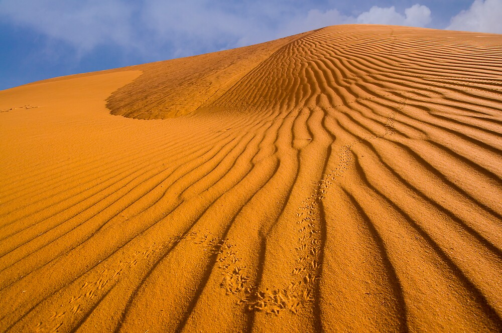 Dune in Colour by Craig Hender