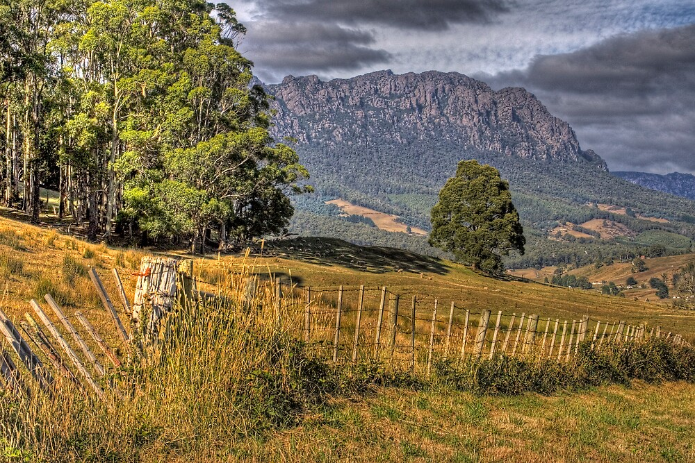 Mt Roland: Tasmania by Colin  Ewington