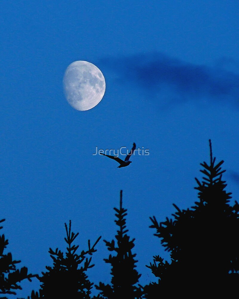 Moon From Roncalli by JerryCurtis