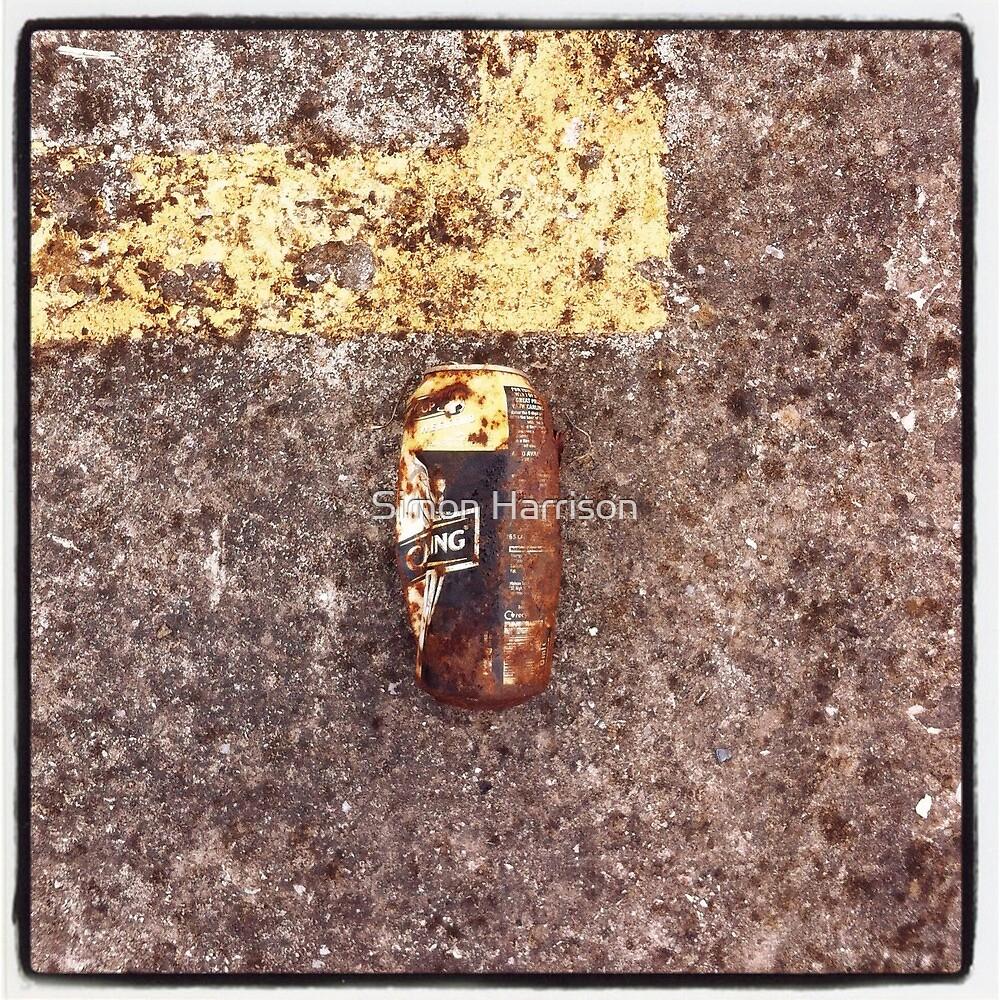 Litter imitating dereliction by Simon Harrison