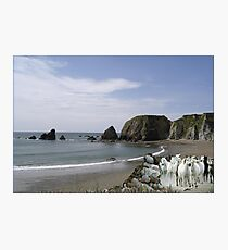 911-Rocky Beach Stampede Photographic Print