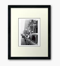 New York Llama Framed Print