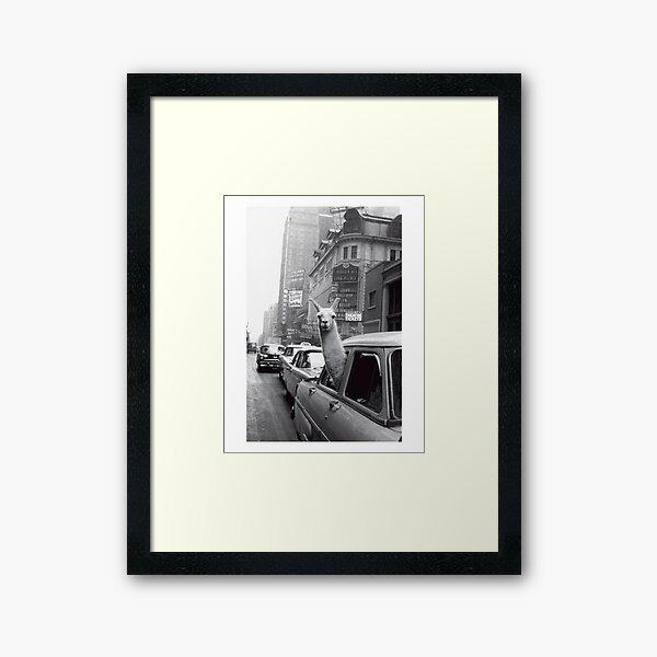 New York Llama Framed Art Print