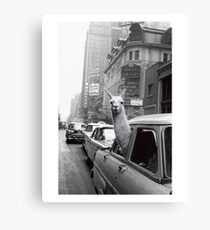 New York Llama Canvas Print