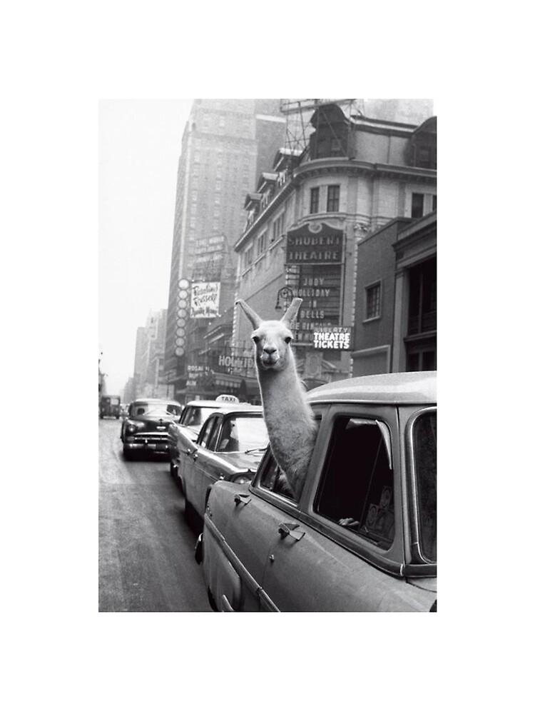 Nueva York Llama de ToastCrumbs