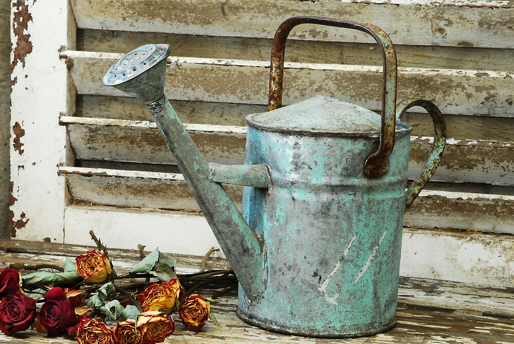antique,water, can,spout,weathered by andreeaton