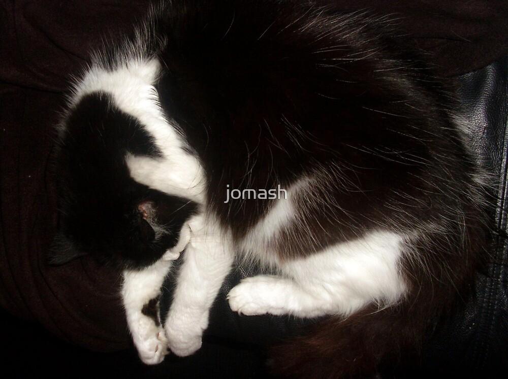 Still Asleep by jomash