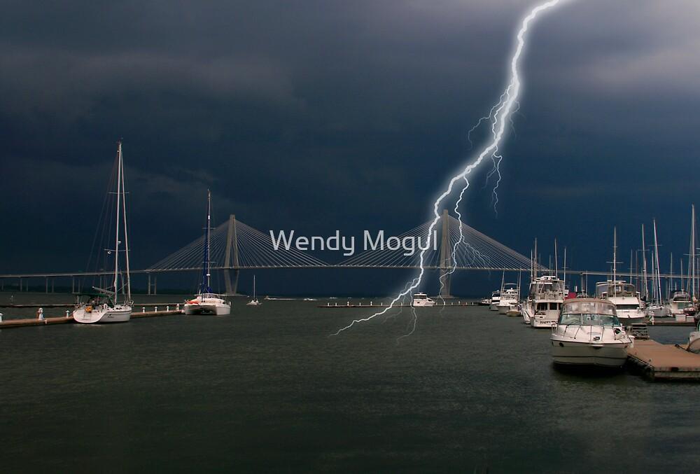 Storm Warning by Wendy Mogul