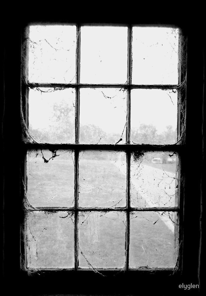 Looking Out - B&W by elyglen
