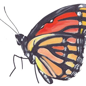 Butterfly by mayden