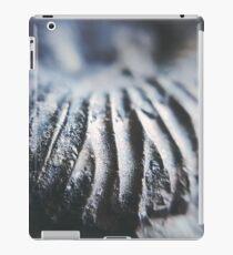 Ammonite Dunes// Nature // Fossil // Photography iPad Case/Skin