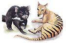 Tasmanian Devil & Tasmanian Tiger by Meaghan Roberts
